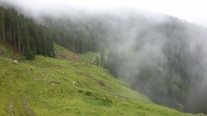 Panorama im Nebel