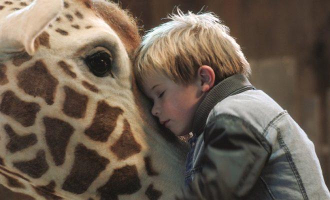 Mein Freund, die Giraffe.